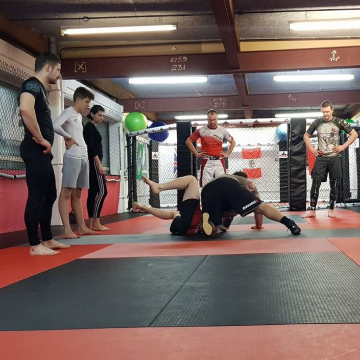 Martial arts students watching wrestling demonstration
